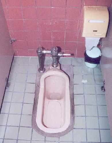 Asian Toilets